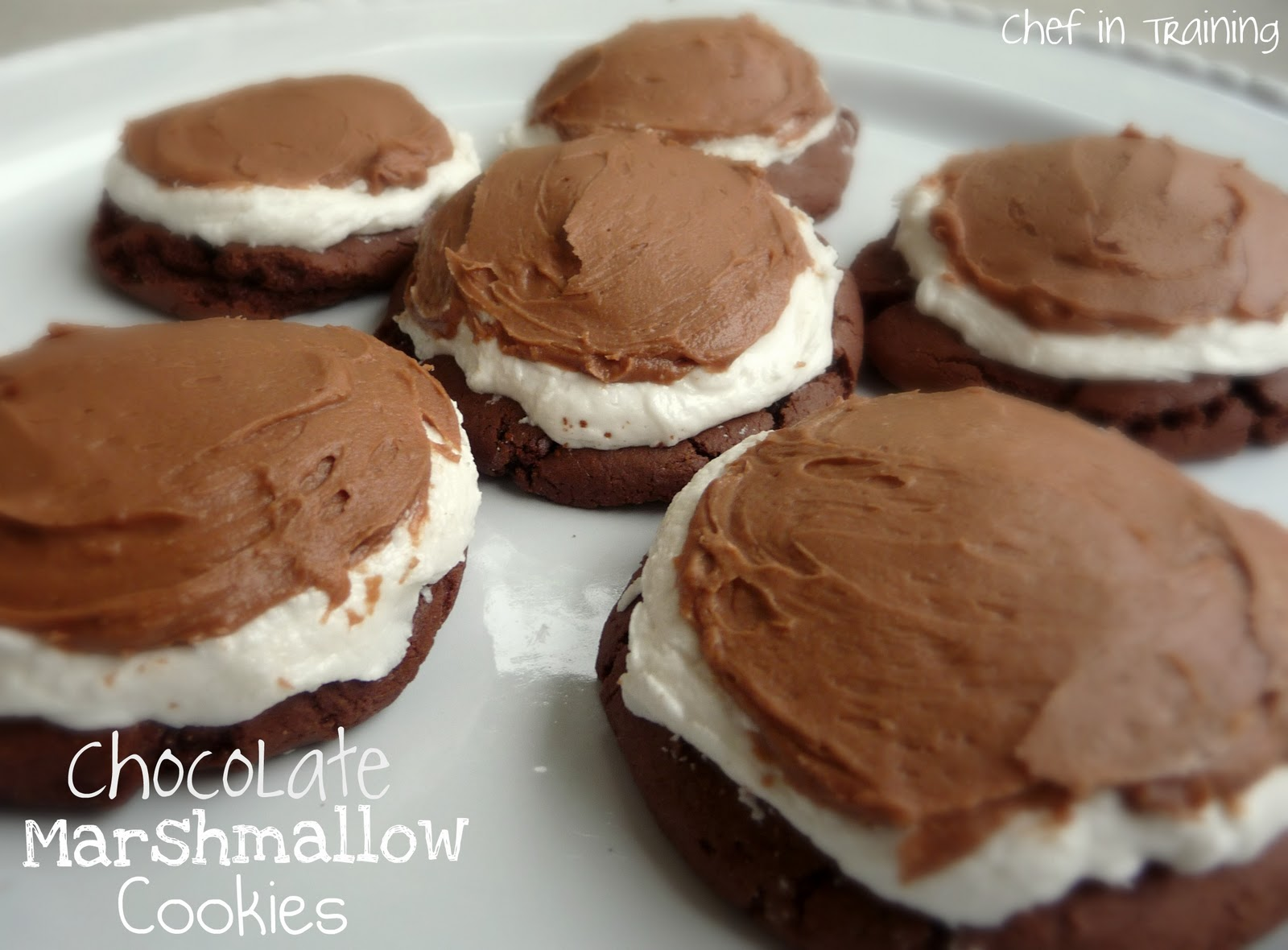 Chocolate Marshmallow Biscuit Cake Recipe — Dishmaps