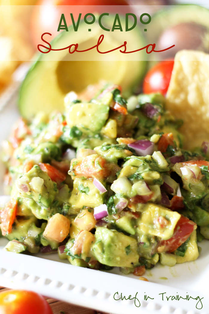 The Best Appetizer Recipes - These appetizer recipes are perfect for Christmas Parties, New Years, Birthday Parties, or any time that you are craving a yummy bite! These are so darn good! PIN IT NOW and make them later!