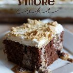 Better than Anything S'more Cake!... This cake is super easy and is the perfect way to enjoy a hint of summer year round!