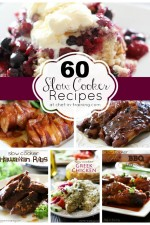 OVER 60 AMAZING Slow Cooker Recipes
