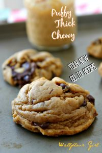 my-favorite-puffy-chewy-peanut-butter-chocolate-chip-cookie-6-022114