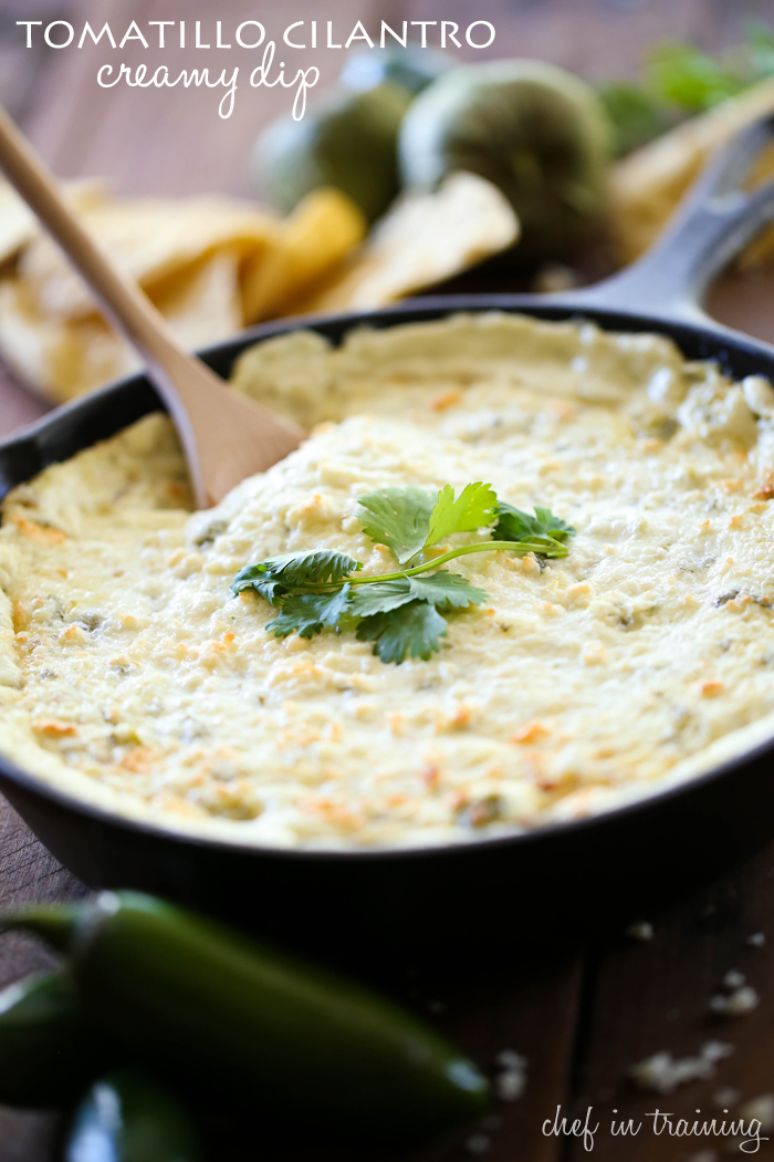 Tomatillo Cilantro Creamy Dip from chef-in-training.com ...This dip ...