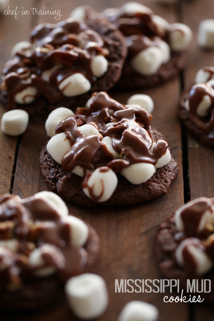 Mississippi Mud Cookies - Chef in Training