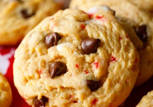 chocolaty-candy-cane-cookies-1