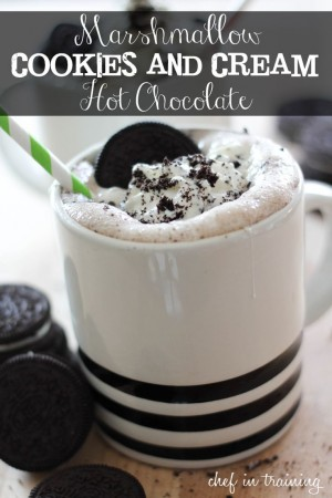 25 Awesome Hot Cocoa Recipes