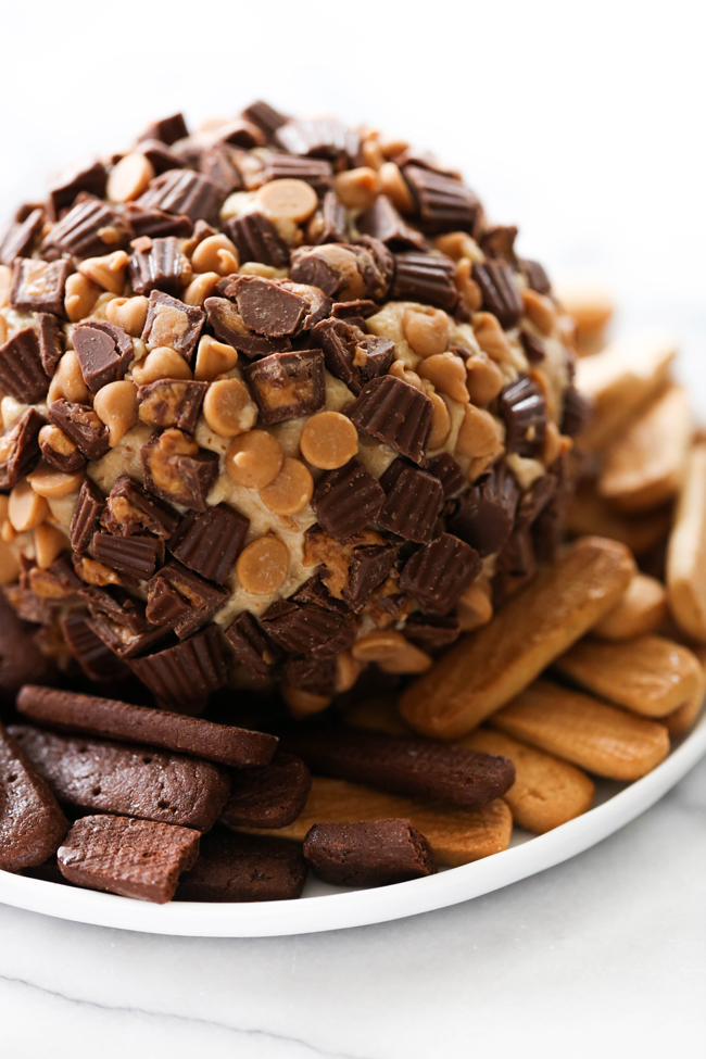 This Chocolate Peanut Butter Cheese Ball is such a delicious dessert appetizer. It will be the hit of the party! It tastes like a Reese's in the form of one tasty and unforgettable appetizer.